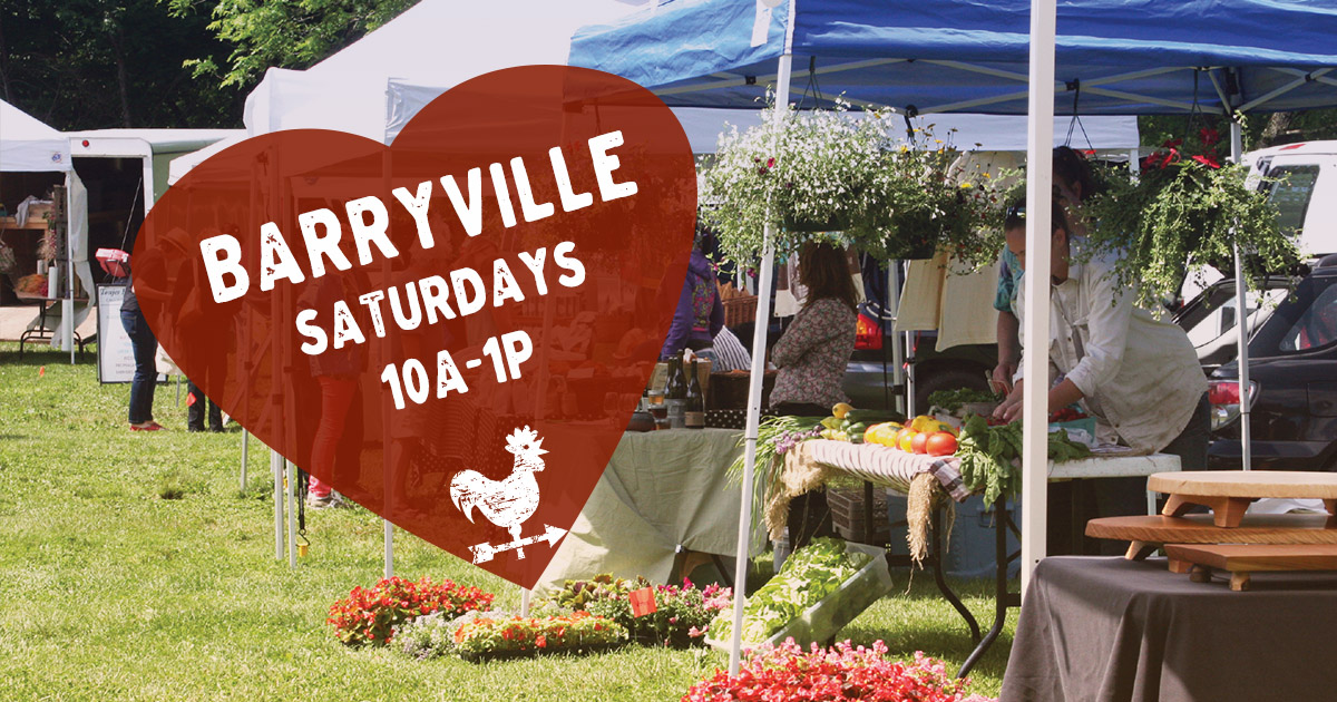 Barryville Farmers Market in the Catskills